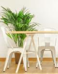 Mesa de comedor de madera maciza de eucalipto y trípodes de acero lacado en blanco